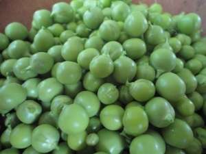 gooseberries 011