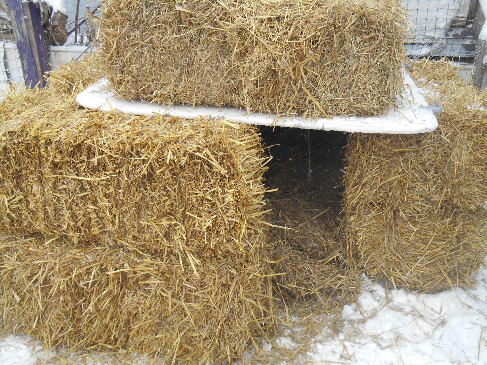 Straw Dog Straw House