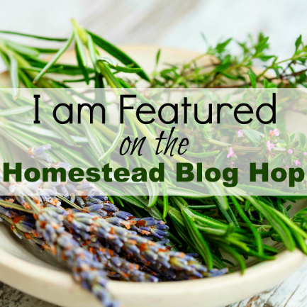 Hometead-Blog-Hop-Featured-Badge