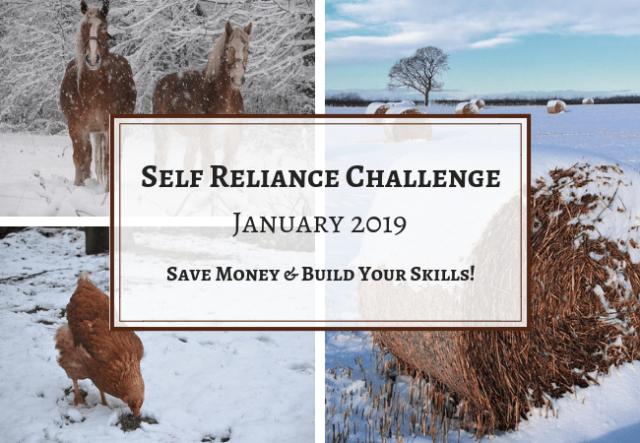 Self-Reliance-Challenge-2019