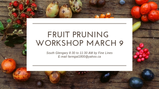 Fruit Pruning Workshop March 9 (1)